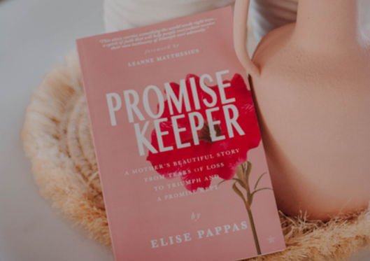 Book Review: Promise Keeper